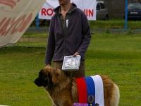 Кубок Великого Новгорода-2008