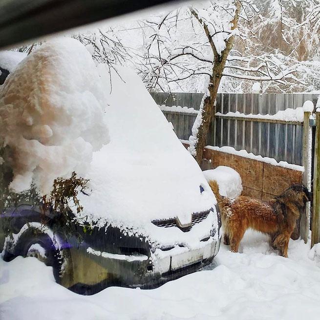 Выпало немного снега